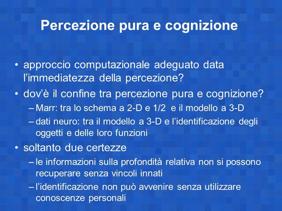 Percezione pura e cognizione approccio computazionale adeguato data l'immediatezza della percezione? dov'è il confine tra percezione pura e cognizione