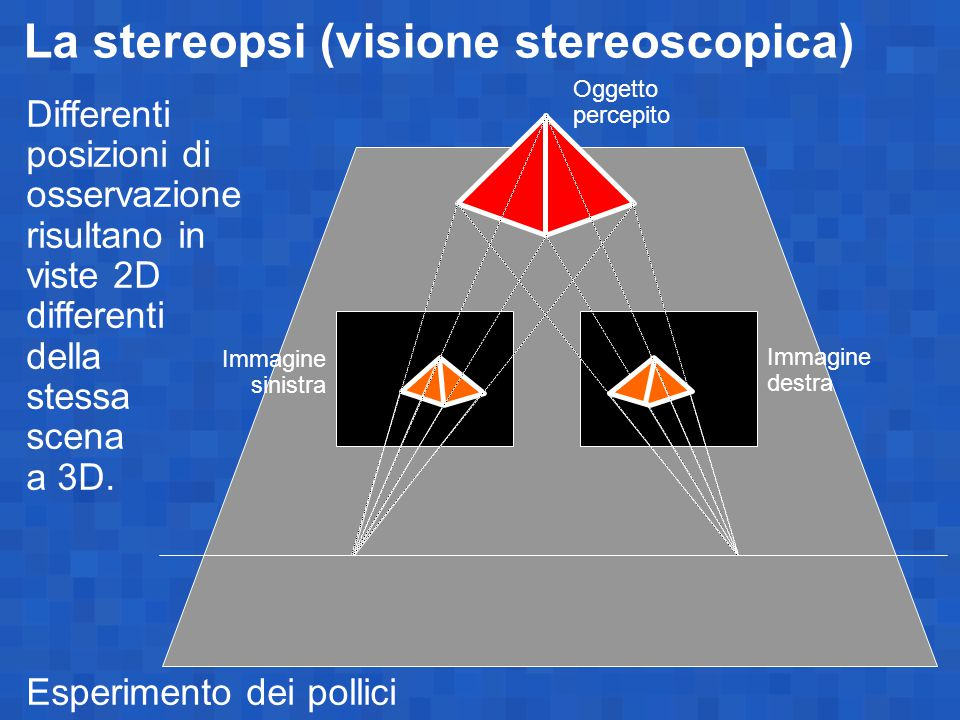 La stereopsi (visione stereoscopica) Differenti posizioni di osservazione risultano in viste 2D differenti della stessa scena a 3D. Esperimento dei po