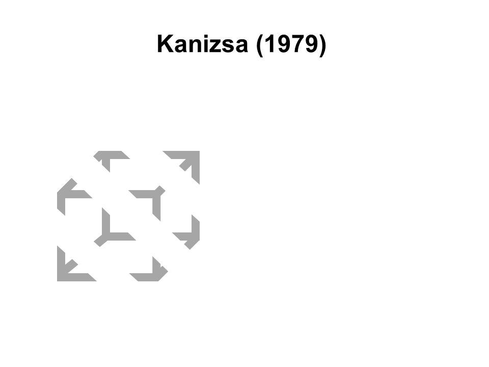 Gradiente di tessitura e orientamento gradienti di tessitura funzione della forma e dell'orientamento di una superficie connessione tra profondità e orientamento –data la profondità di ciascuna parte di una superficie rispetto all'osservatore  orientamento –come il sistema visivo calcola l'inclinazione di una superficie fissa gli assi dell'inclinazione in modo che siano perpendicolari alla direzione in cui la densità degli elementi varia di più esistono dei programmi che utilizzano tale metodo, ma non si sa come il sistema umano interpreti i gradienti di tessitura