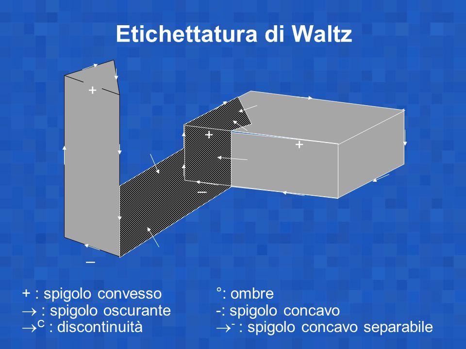 Etichettatura di Waltz + _ + _ + : spigolo convesso°: ombre  : spigolo oscurante-: spigolo concavo  C : discontinuità  - : spigolo concavo separabi