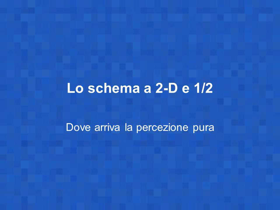 Lo schema a 2-D e 1/2 Dove arriva la percezione pura