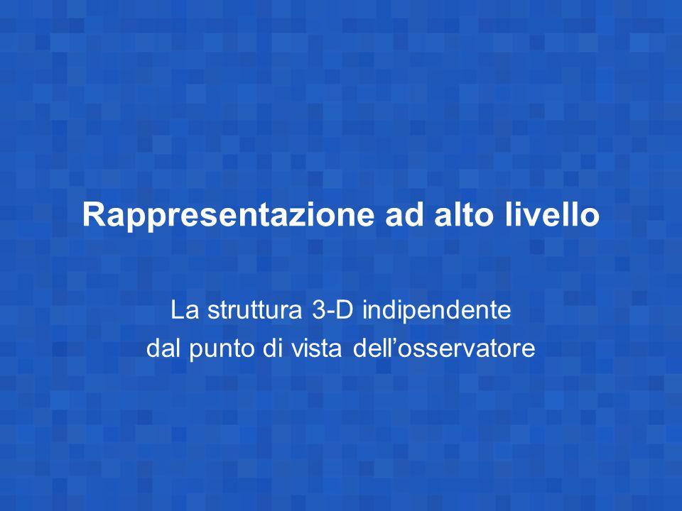 Rappresentazione ad alto livello La struttura 3-D indipendente dal punto di vista dell'osservatore