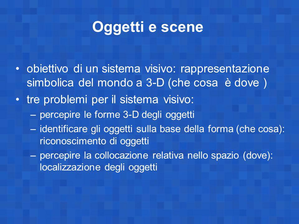Oggetti e scene obiettivo di un sistema visivo: rappresentazione simbolica del mondo a 3-D (che cosa è dove ) tre problemi per il sistema visivo: –per