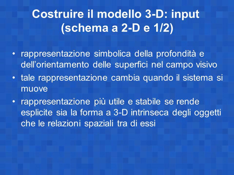 Costruire il modello 3-D: input (schema a 2-D e 1/2) rappresentazione simbolica della profondità e dell'orientamento delle superfici nel campo visivo