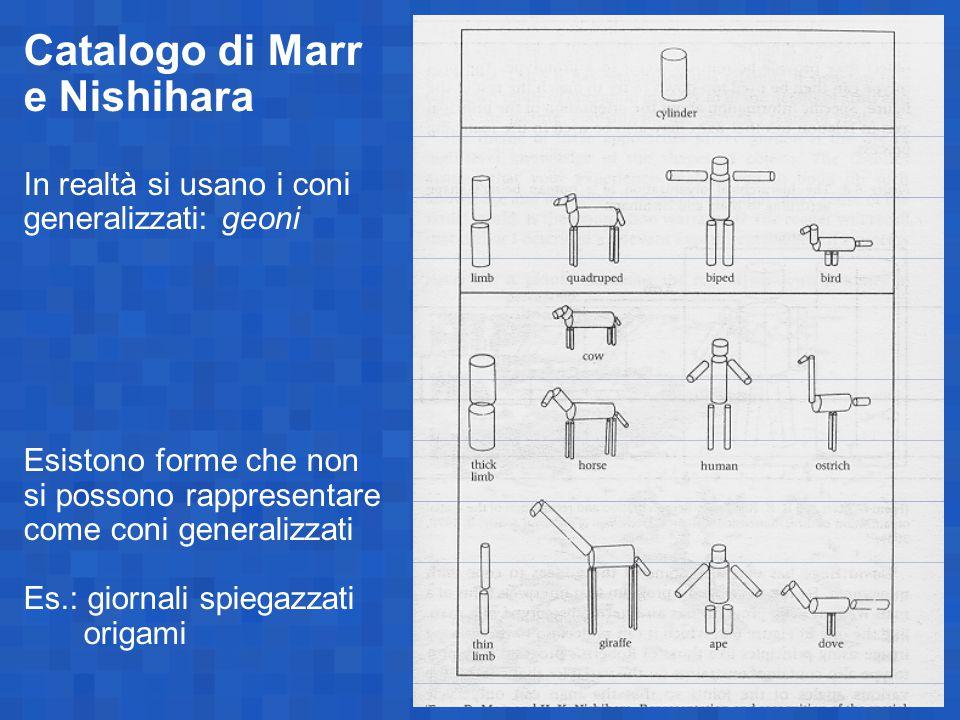 Catalogo di Marr e Nishihara In realtà si usano i coni generalizzati: geoni Esistono forme che non si possono rappresentare come coni generalizzati Es