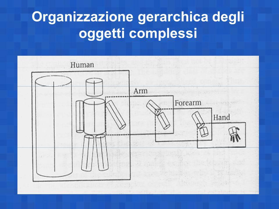 Organizzazione gerarchica degli oggetti complessi