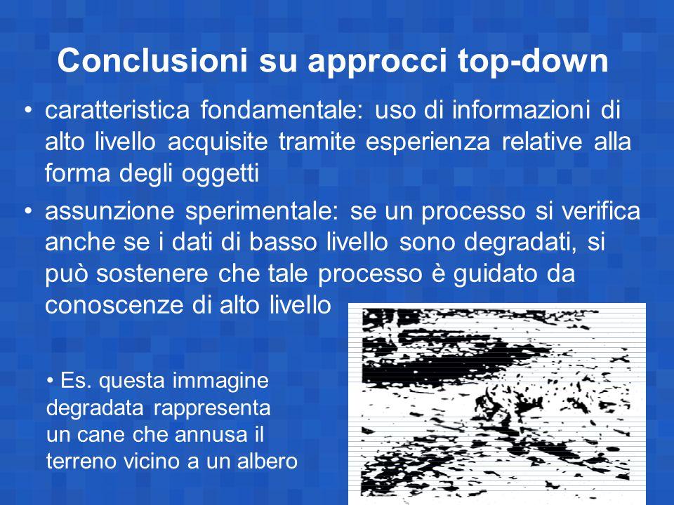 Conclusioni su approcci top-down caratteristica fondamentale: uso di informazioni di alto livello acquisite tramite esperienza relative alla forma deg