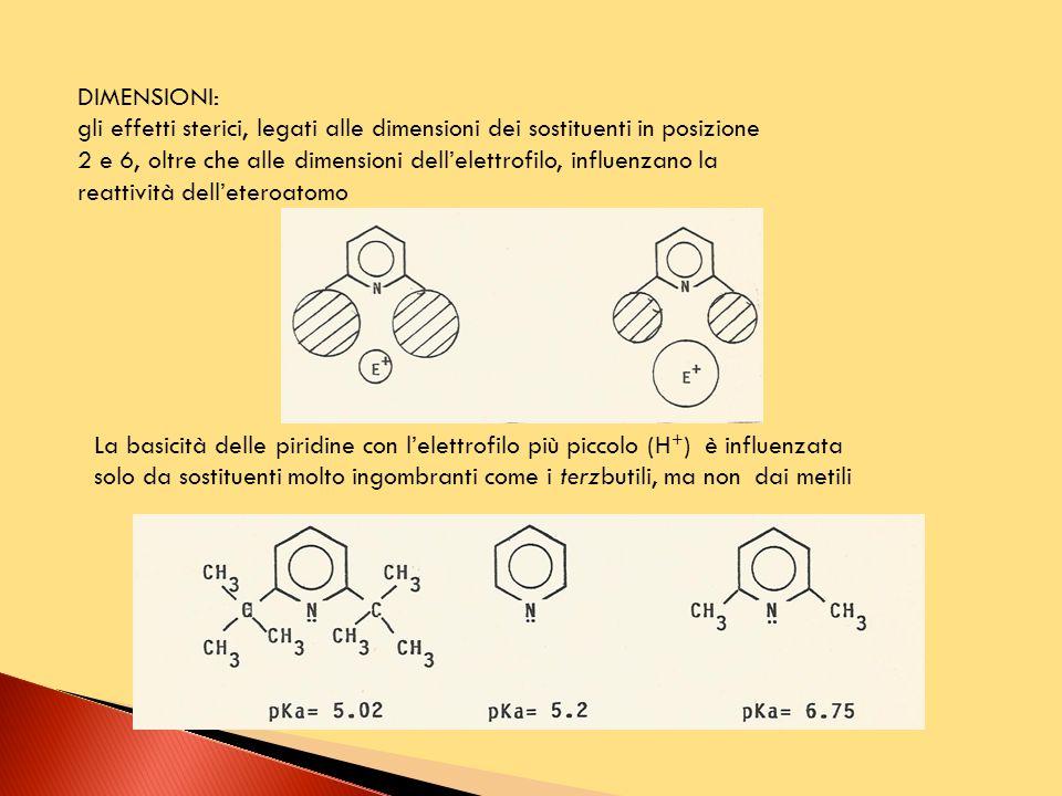 DIMENSIONI: gli effetti sterici, legati alle dimensioni dei sostituenti in posizione 2 e 6, oltre che alle dimensioni dell'elettrofilo, influenzano la reattività dell'eteroatomo La basicità delle piridine con l'elettrofilo più piccolo (H + ) è influenzata solo da sostituenti molto ingombranti come i terzbutili, ma non dai metili
