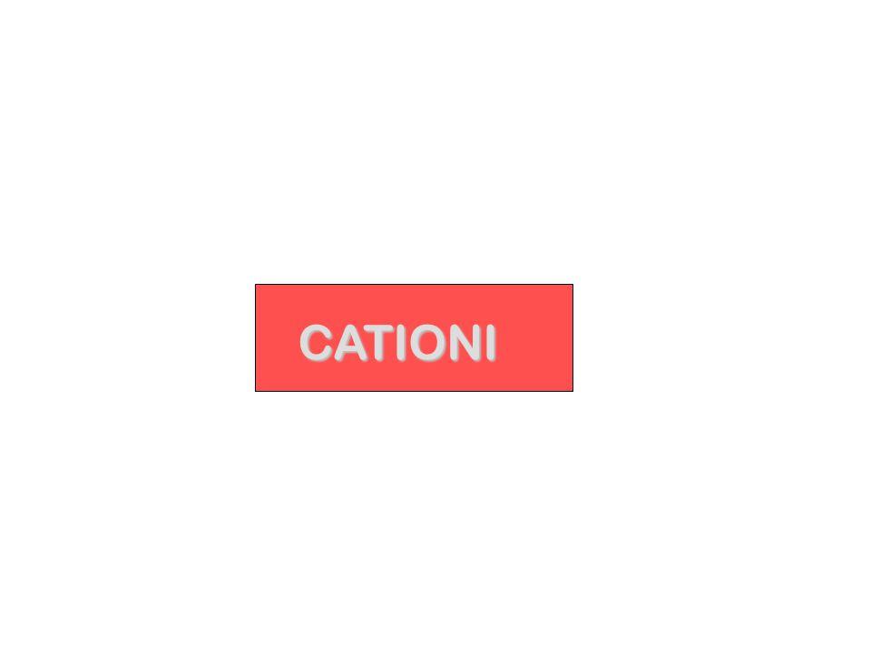 CATIONI