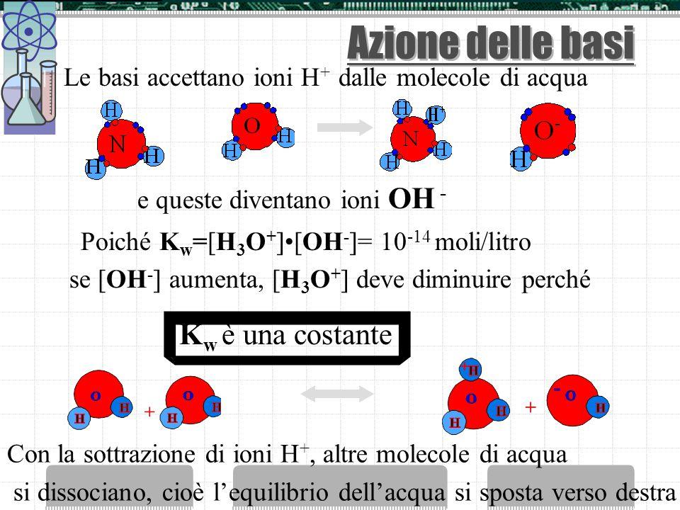 Azione degli acidi Gli acidi in acqua si dissociano e liberano ioni H + All'aggiunta di ioni H +, gli ioni OH - si riassociano, cioè l'equilibrio dell