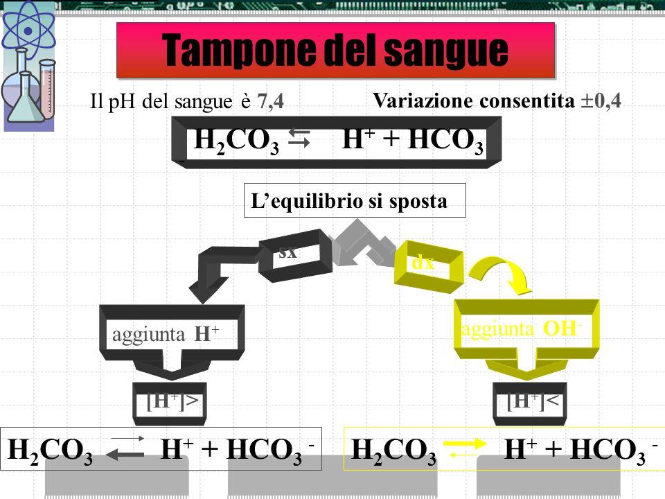 I sistemi biologici e il pH Tutti i sistemi biologici dipendono dal pH:  una piccola variazione di pH può produrre notevoli modificazioni sui process