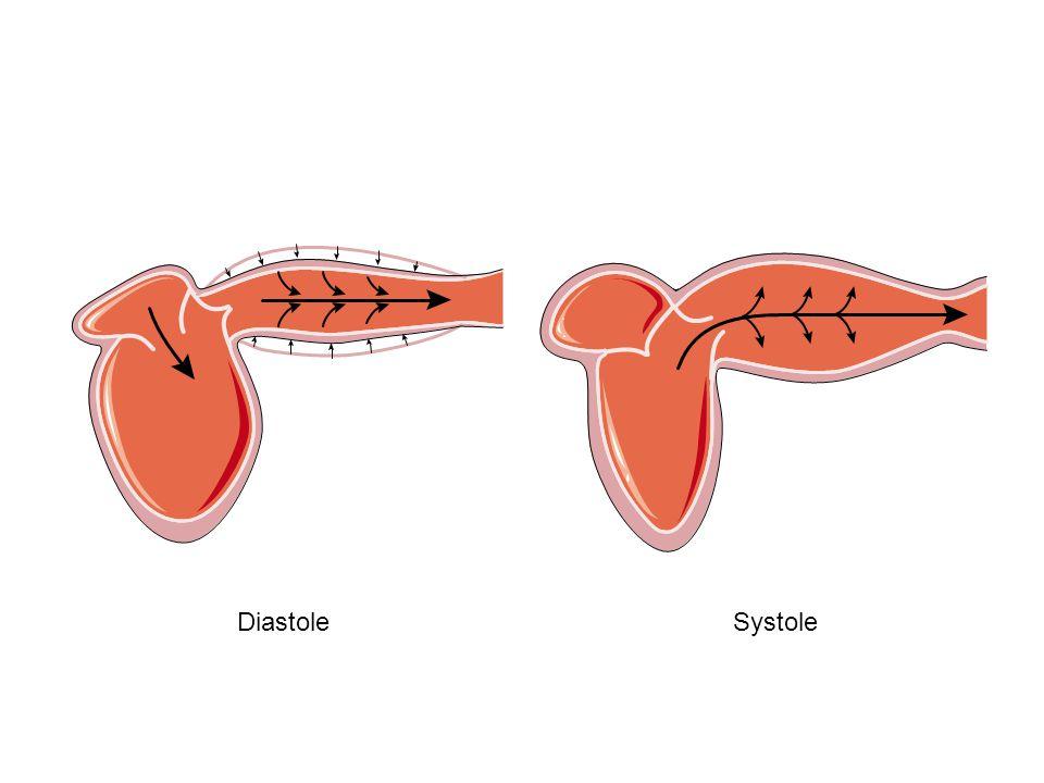 SISTOLE (1) CONTRAZIONE ISOVOLUMETRICA: aumento della tensione delle fibre senza accorciamento; progressivo aumento della pressione intraventricolare