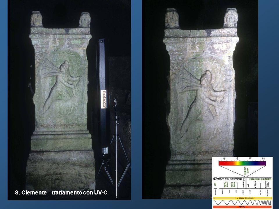 Osservazione delle modifiche morfologiche della superficie mediante microscopio ottico e microscopio elettronico a scansione.