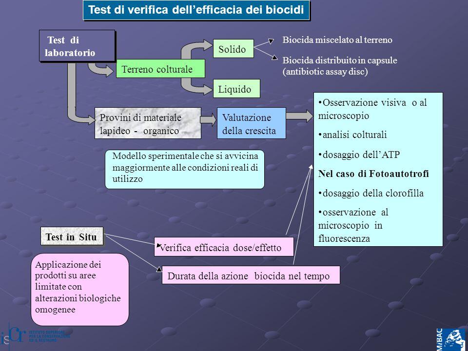Aggiunta del biocida a varie concentrazioni Inoculo della sospensione di microrganismi Lettura dello sviluppo Inoculo della sospensione di microrganismi Anello di inibizione Aggiunta del biocida a varie concentrazioni Antibiotic assay disc Test di laboratorio