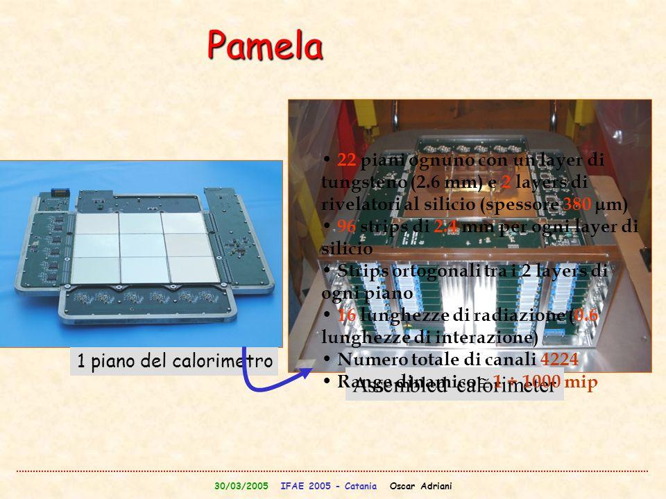 30/03/2005 IFAE 2005 - Catania Oscar Adriani 1 piano del calorimetro Assembled calorimeter Pamela 22 piani ognuno con un layer di tungsteno (2.6 mm) e
