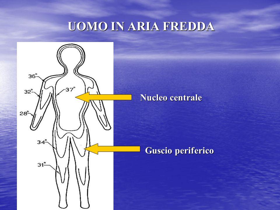 UOMO IN ARIA FREDDA Nucleo centrale Guscio periferico
