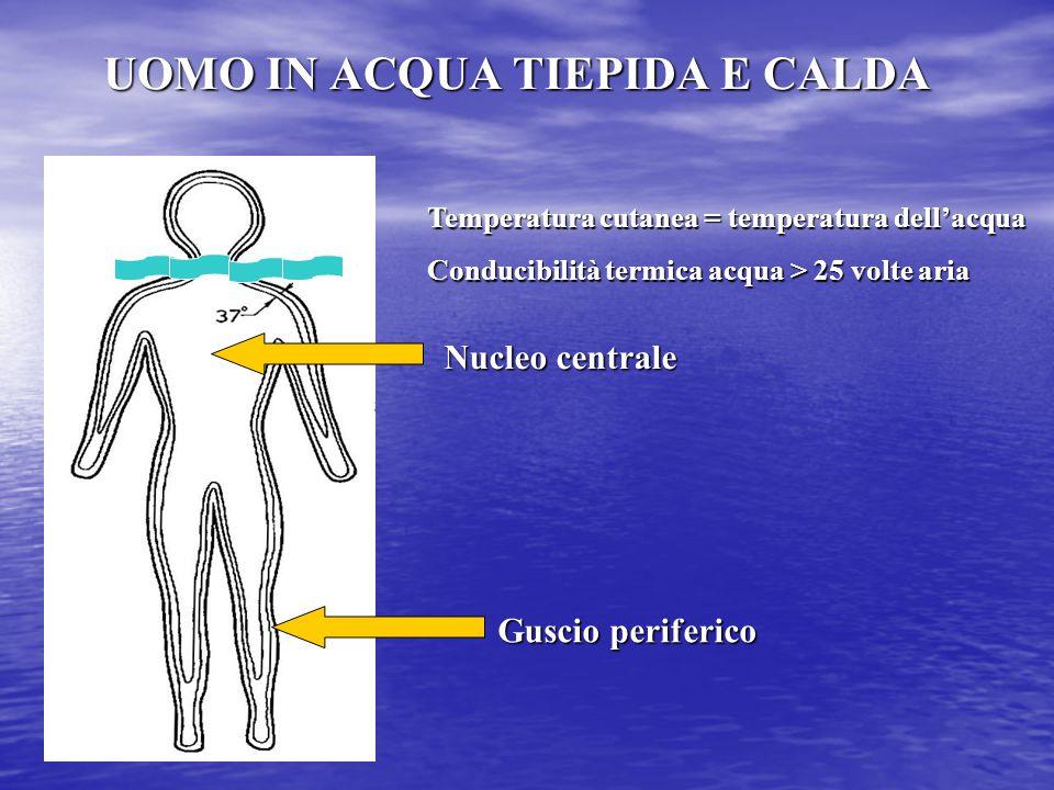 UOMO IN ACQUA TIEPIDA E CALDA Temperatura cutanea = temperatura dell'acqua Conducibilità termica acqua > 25 volte aria Nucleo centrale Guscio periferi