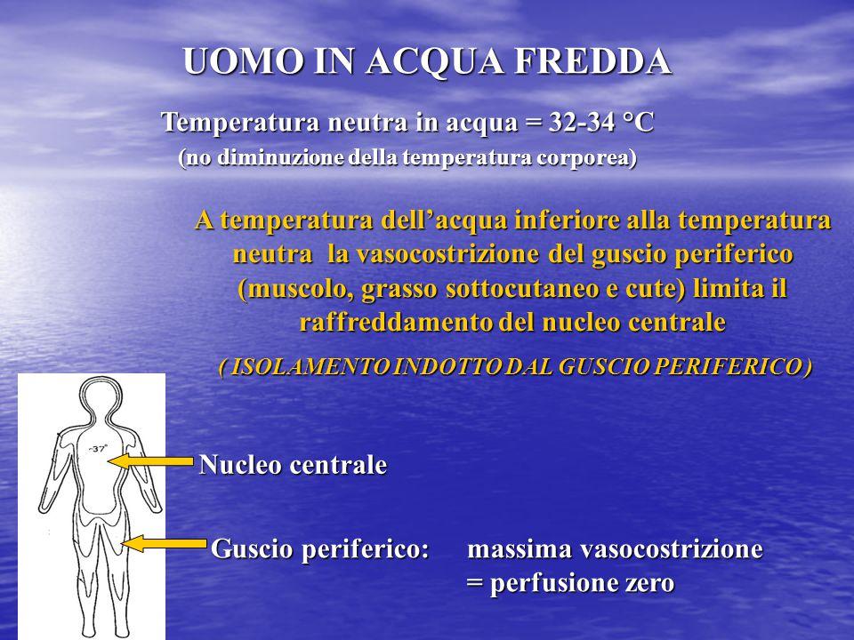 UOMO IN ACQUA FREDDA Nucleo centrale Guscio periferico: massima vasocostrizione = perfusione zero Temperatura neutra in acqua = 32-34 °C (no diminuzio