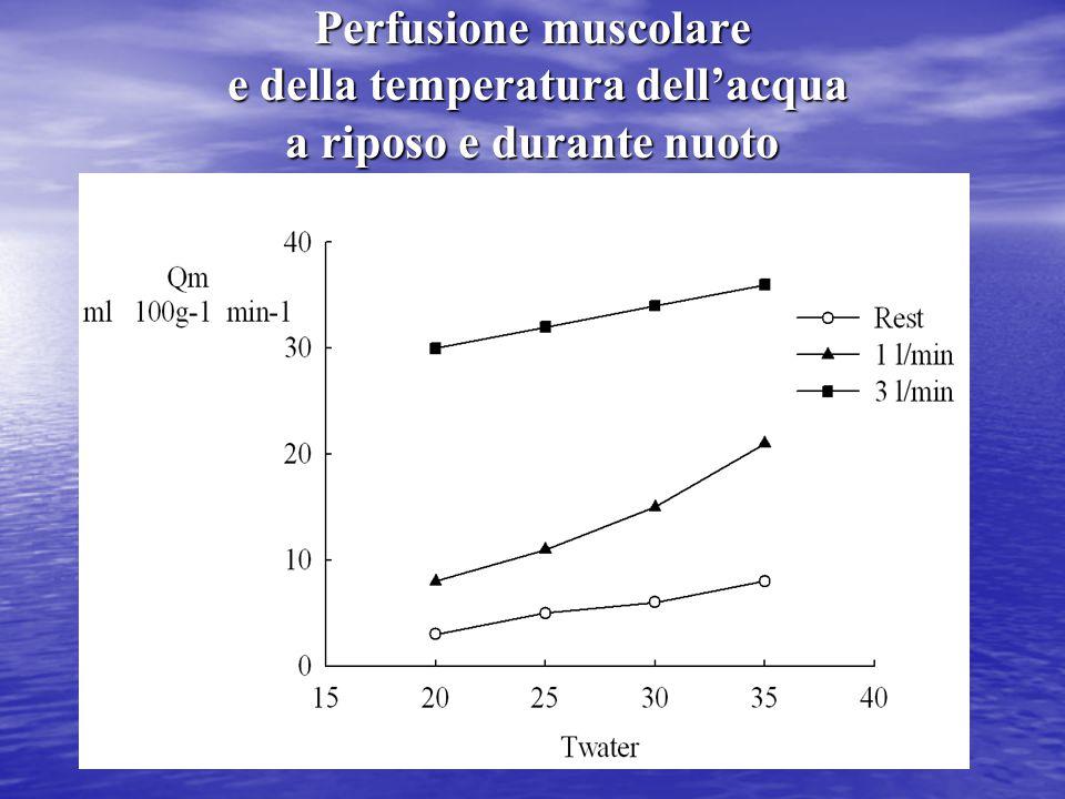 Perfusione muscolare e della temperatura dell'acqua a riposo e durante nuoto