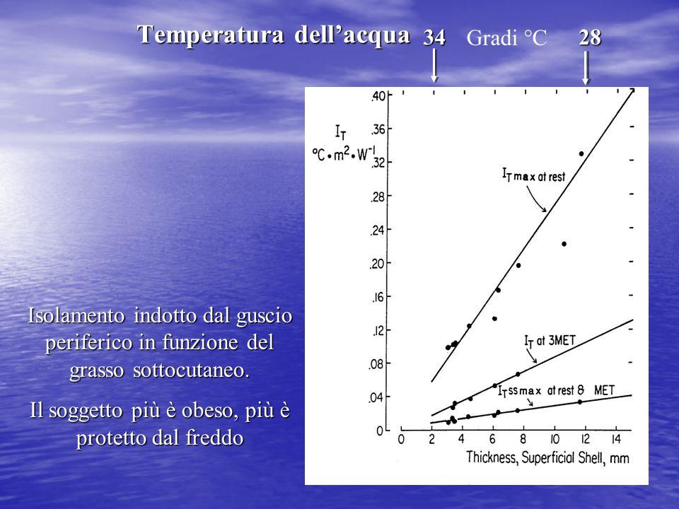 34 28 Isolamento indotto dal guscio periferico in funzione del grasso sottocutaneo. Il soggetto più è obeso, più è protetto dal freddo Gradi °C Temper