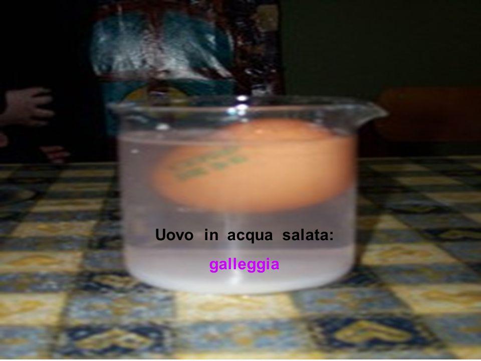 Uovo in acqua salata: galleggia