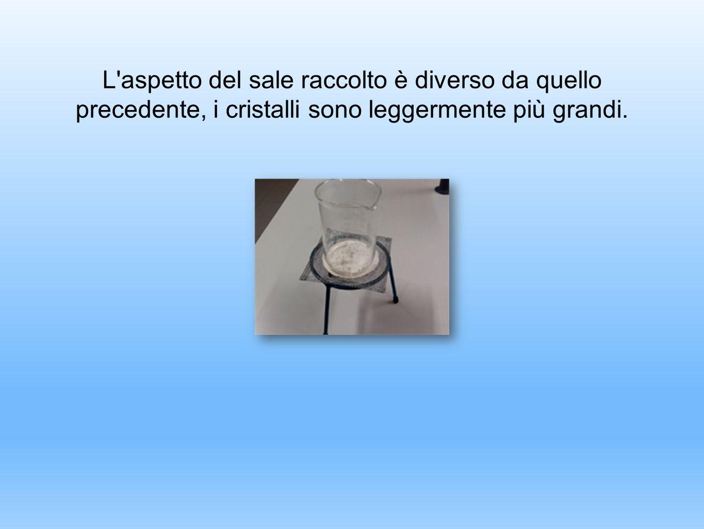 L'aspetto del sale raccolto è diverso da quello precedente, i cristalli sono leggermente più grandi.