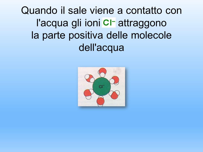 Quando il sale viene a contatto con l'acqua gli ioni attraggono la parte positiva delle molecole dell'acqua