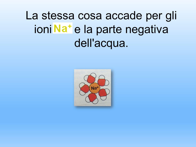 La stessa cosa accade per gli ioni e la parte negativa dell'acqua.