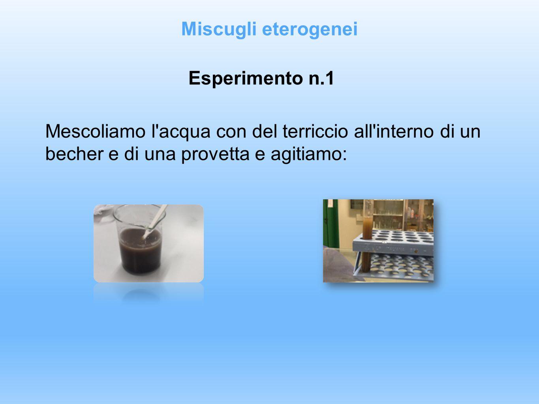Esperimento n.1 Mescoliamo l'acqua con del terriccio all'interno di un becher e di una provetta e agitiamo: Miscugli eterogenei