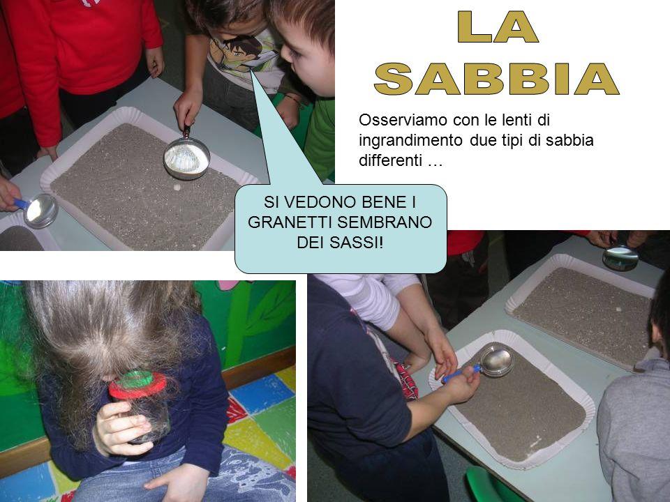Li confrontiamo evidenziandone le caratteristiche E come con la terra usiamo colla e sabbia per rappresentare … QUESTA HA I GRANETTI PIU' GROSSI