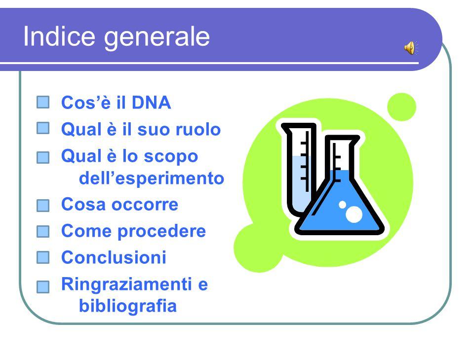 Indice generale Cos'è il DNA Qual è il suo ruolo Qual è lo scopo dell'esperimento Cosa occorre Come procedere Conclusioni Ringraziamenti e bibliografi