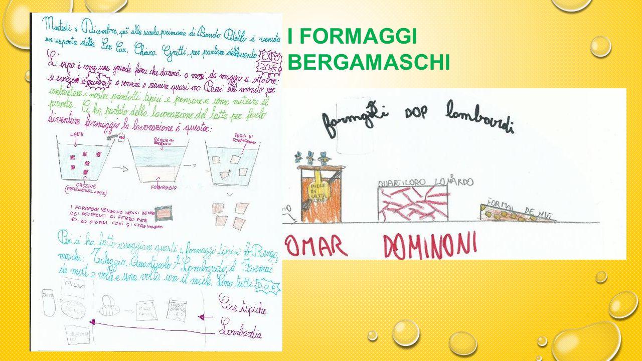 I FORMAGGI BERGAMASCHI