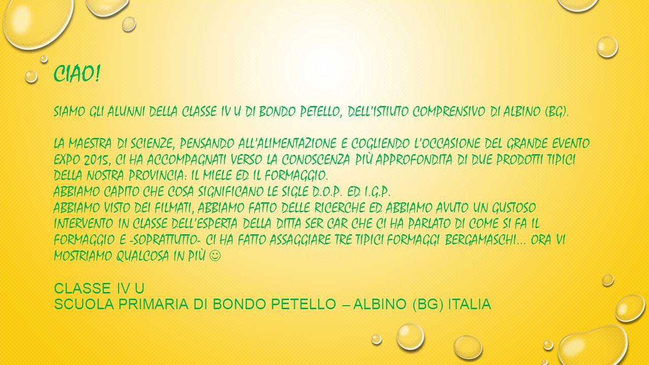 CIAO.SIAMO GLI ALUNNI DELLA CLASSE IV U DI BONDO PETELLO, DELL'ISTIUTO COMPRENSIVO DI ALBINO (BG).