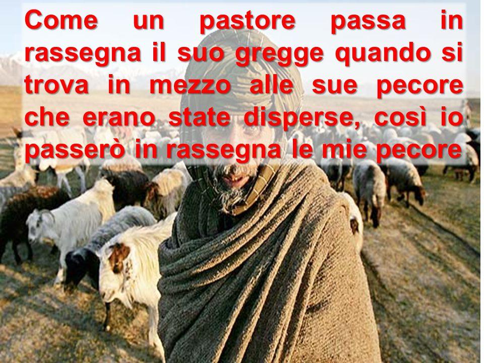 Come un pastore passa in rassegna il suo gregge quando si trova in mezzo alle sue pecore che erano state disperse, così io passerò in rassegna le mie