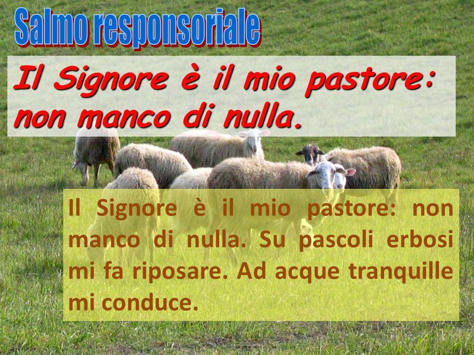 Il Signore è il mio pastore: non manco di nulla. Il Signore è il mio pastore: non manco di nulla. Su pascoli erbosi mi fa riposare. Ad acque tranquill