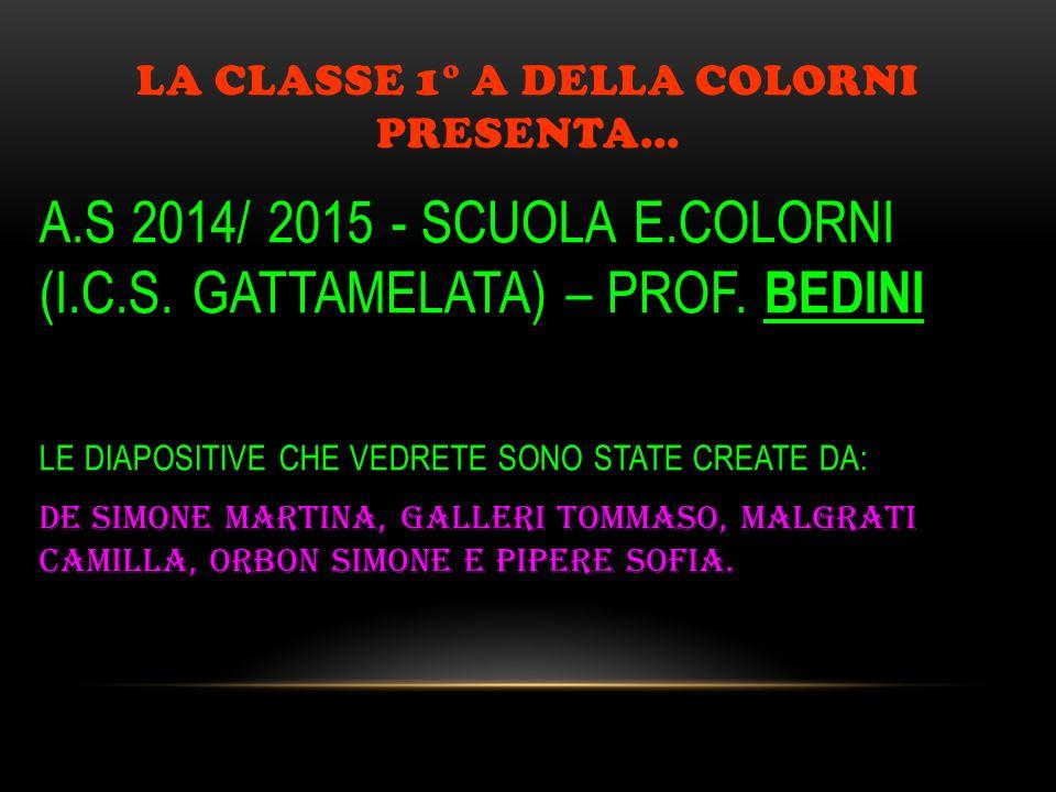 LA CLASSE 1° A DELLA COLORNI PRESENTA… A.S 2014/ 2015 - SCUOLA E.COLORNI (I.C.S. GATTAMELATA) – PROF. BEDINI LE DIAPOSITIVE CHE VEDRETE SONO STATE CRE