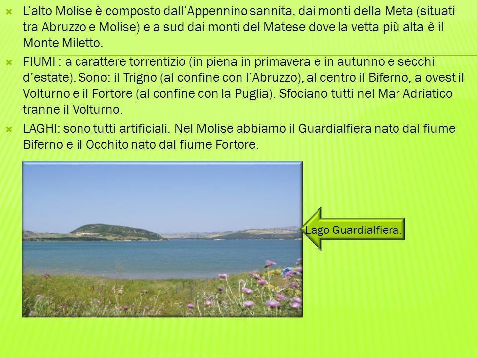 L'alto Molise è composto dall'Appennino sannita, dai monti della Meta (situati tra Abruzzo e Molise) e a sud dai monti del Matese dove la vetta più