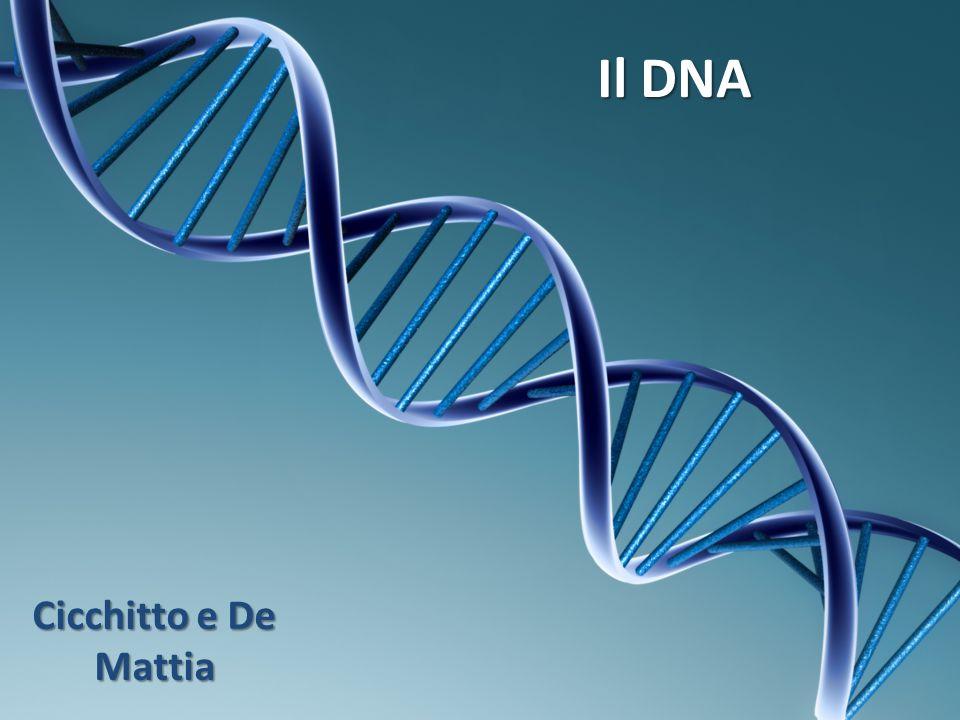 Il DNA fu inizialmente isolato dal biochimico svizzero Friedrich Miescher che, nel 1869, individuò una sostanza microscopica contenuta nel pus di bende chirurgiche utilizzate.