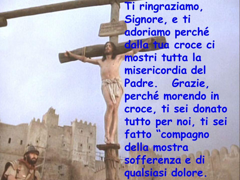 Ti ringraziamo, Signore, e ti adoriamo perché dalla tua croce ci mostri tutta la misericordia del Padre. Grazie, perché morendo in croce, ti sei donat