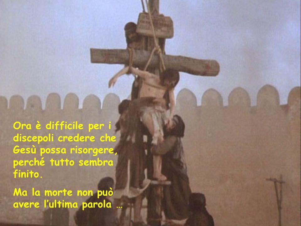 Ora è difficile per i discepoli credere che Gesù possa risorgere, perché tutto sembra finito. Ma la morte non può avere l'ultima parola …