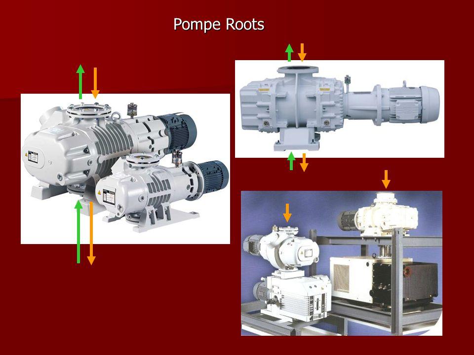 Pompe Roots