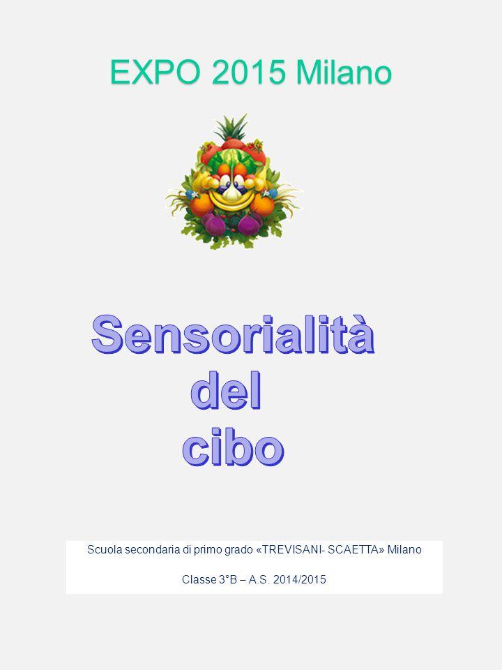 Scuola secondaria di primo grado «TREVISANI- SCAETTA» Milano Classe 3°B – A.S. 2014/2015 EXPO 2015 Milano