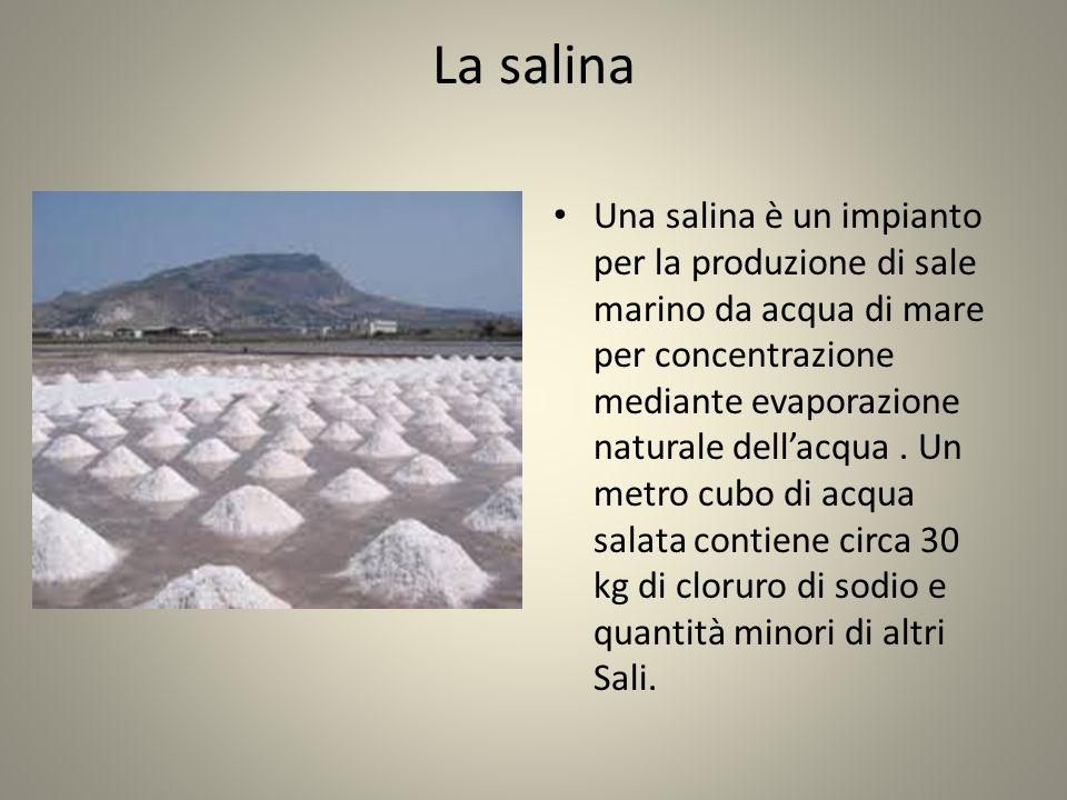 La salina Una salina è un impianto per la produzione di sale marino da acqua di mare per concentrazione mediante evaporazione naturale dell'acqua.