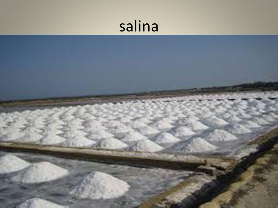 La descrizione di una salina Una salina è costituita da una serie di vasche in cui l'acqua evapora per irraggiamento solare.