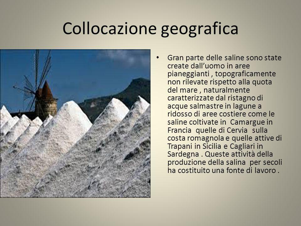 Collocazione geografica Gran parte delle saline sono state create dall'uomo in aree pianeggianti, topograficamente non rilevate rispetto alla quota de