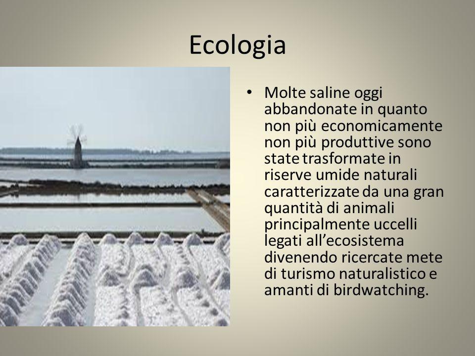 Ecologia Molte saline oggi abbandonate in quanto non più economicamente non più produttive sono state trasformate in riserve umide naturali caratteriz
