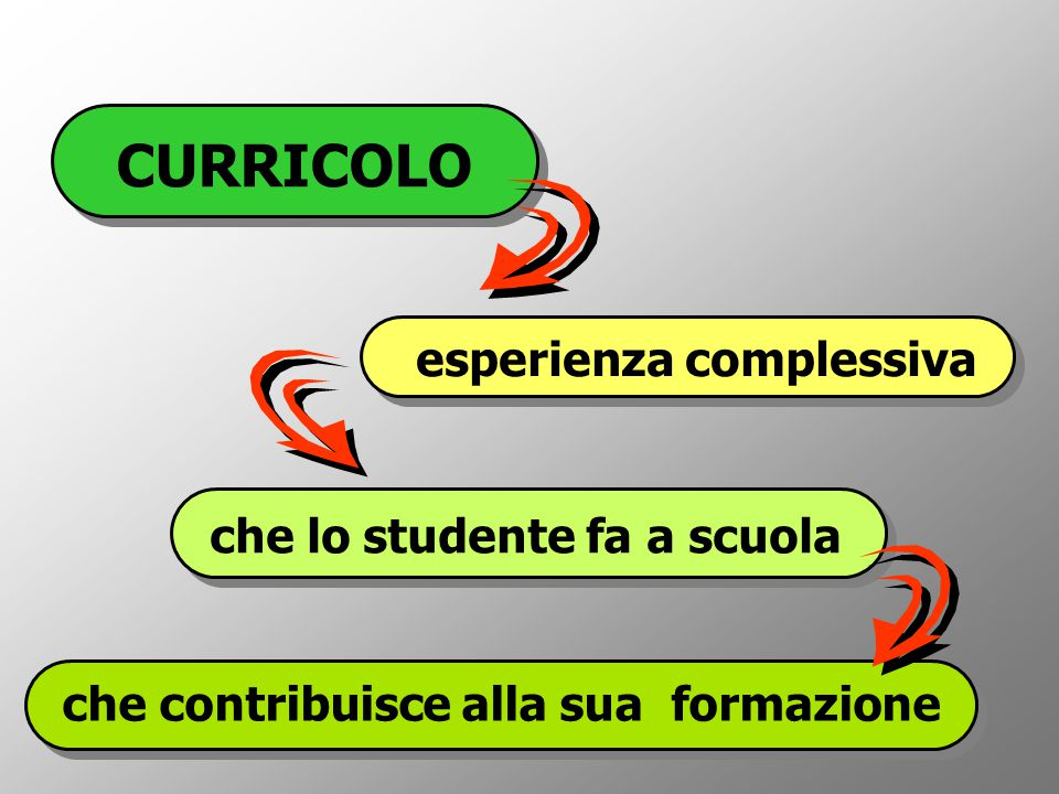 CURRICOLO esperienza complessiva che lo studente fa a scuola che contribuisce alla sua formazione