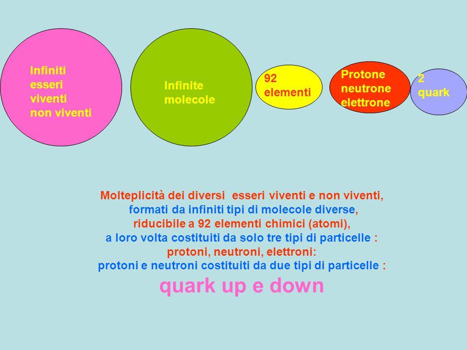 Infiniti esseri viventi non viventi Infinite molecole 92 elementi Protone neutrone elettrone 2 quark Molteplicità dei diversi esseri viventi e non viv