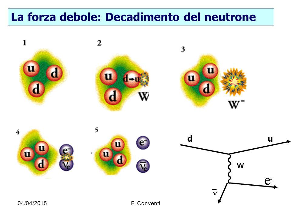 04/04/2015F. Conventi La forza debole: Decadimento del neutrone W e - du