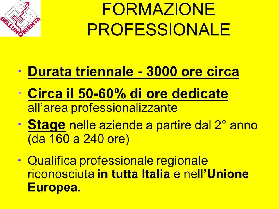 FORMAZIONE PROFESSIONALE Durata triennale - 3000 ore circa Circa il 50-60% di ore dedicate all'area professionalizzante Stage nelle aziende a partire